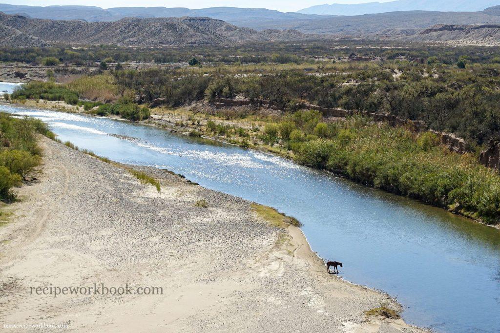 Horse drinking from the Rio Grande near Boquillas, Mexico